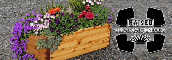 Raised Cedar Garden bed with Floral Arrangement